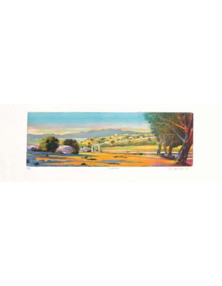 + Cornice 57sm03 Cassetta arancione poro aperto 40X30 Cm.